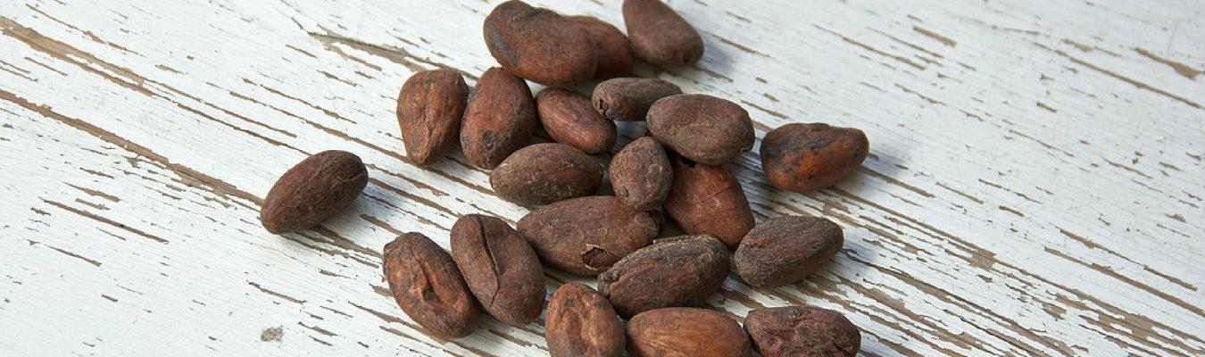 Home Cocoa 3
