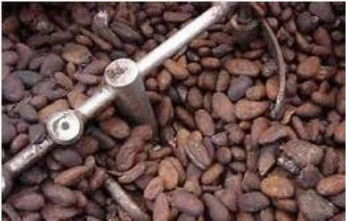 Whole bean roasting
